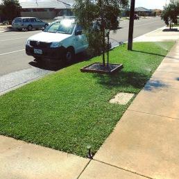 Pop up lawn irrigation